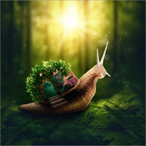 Autocolante decorativo Snail in the magic forest