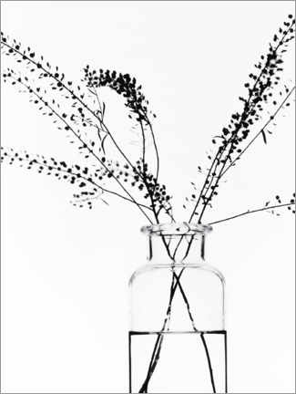 Quadro de madeira  Bottle with branches I - Magda Izzard