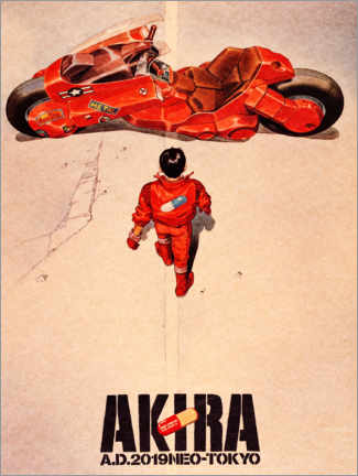 Quadro em acrílico  Akira - Entertainment Collection