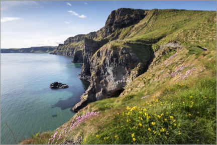 Quadro de madeira  Calm bay in Ireland by the sea - The Wandering Soul