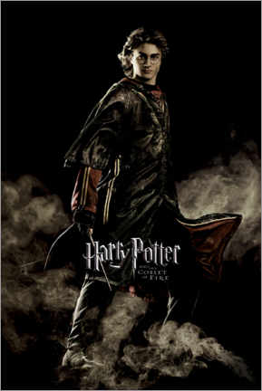Póster Premium  Harry Potter e o Cálice de Fogo - Harry Potter