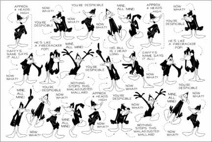 Póster Premium  Daffy Duck - Expressions
