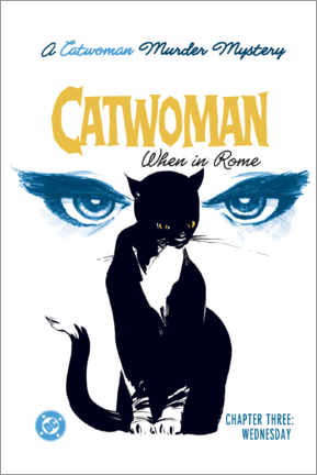 Póster Premium  Catwoman Mystery