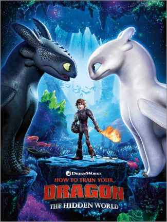 Quadro em alumínio  The Hidden world - Toothless & Light Fury