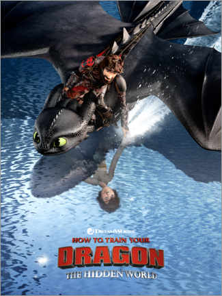 Quadro em tela  The Hidden World - Hiccup & Toothless