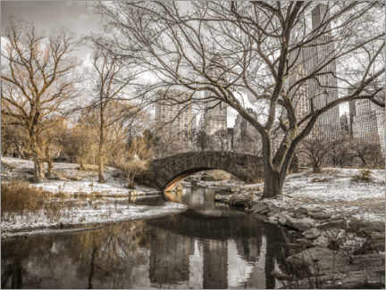 Póster Premium  Central Park New York in winter - Assaf Frank