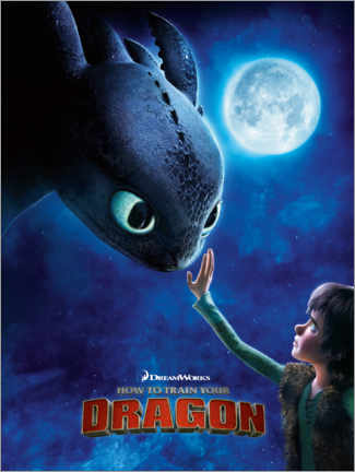Quadro em alumínio  How to train your dragon