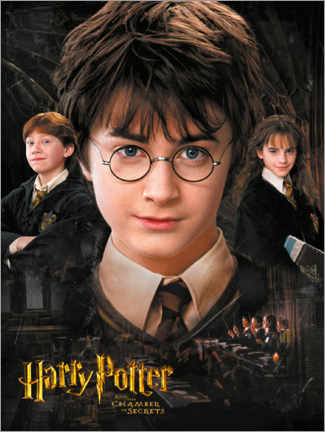 Póster Premium  Harry Potter and the Chamber of Secrets
