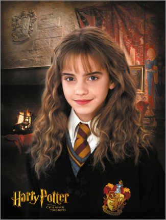 Póster Premium  Hermione and the Chamber of Secrets