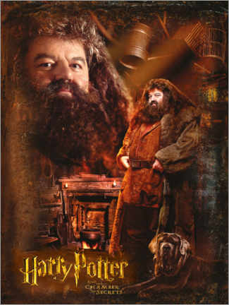 Póster Premium Rubeus Hagrid and the Chamber of Secrets