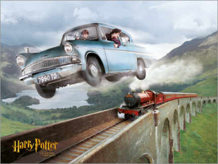 Póster Premium  Harry and Ron - The Chamber of Secrets