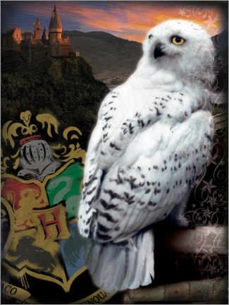 Póster Premium  The Half-Blood Prince - Hedwig