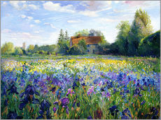 Autocolante decorativo  Field of flowers in the sunset - Timothy Easton