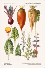 Autocolante decorativo  Beetroot and other vegetables - Elizabeth Rice