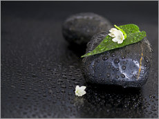 Autocolante decorativo Black stones with leaf