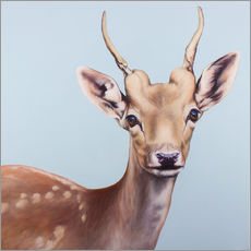 Autocolante decorativo  deer painting - Renate Berghaus