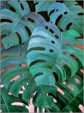 Autocolante decorativo  Monstera Love in Teal and Emerald Green - Micklyn Le Feuvre