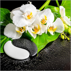 Autocolante decorativo Spa arrangement with white orchid