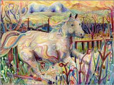 Autocolante decorativo  My Soul is an Escaped Horse - Josh Byer