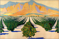 Póster Premium  South African Orange Orchards - Guy Kortright