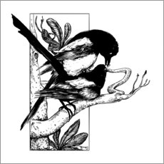 Póster Premium Like the magpies