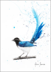 Póster Premium Peaceful Blue Bird