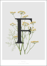 Póster Premium  F is for Fennel - Charlotte Day