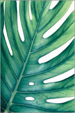 Póster Premium  Monstera verde - Art Couture