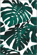 Póster Premium  Folhas de Monstera - Sisi And Seb