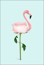 Póster Premium Flamingo Rose