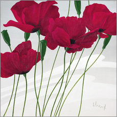 Quadro em plexi-alumínio  Poppies swayed by the wind - Franz Heigl