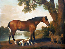 Autocolante decorativo  Horse and two dogs - George Stubbs