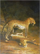 Quadro em plexi-alumínio  Two Leopards lying in the Exeter Exchange - Jacques Laurent Agasse
