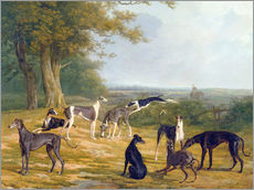 Autocolante decorativo  Nine Greyhounds on a landscape - Jacques Laurent Agasse