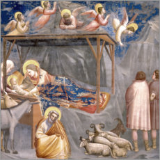 Quadro de madeira  The Nativity - Giotto di Bondone