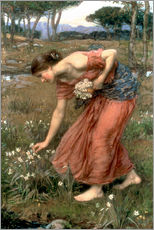 Autocolante decorativo  Narciso - John William Waterhouse
