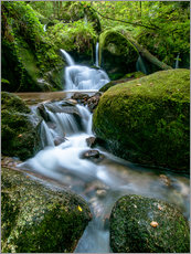 Quadro em plexi-alumínio  Little Waterfall in Black Forest - Andreas Wonisch