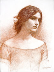Autocolante decorativo  Study for The Lady Clare - John William Waterhouse