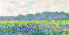 Quadro em plexi-alumínio  Field of Yellow Irises in Giverny - Claude Monet