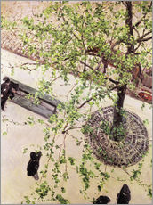 Autocolante decorativo  Boulevard from above - Gustave Caillebotte