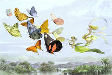 Quadro em plexi-alumínio  The Fairy Queen's carriage - Richard Doyle