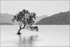 Autocolante decorativo  Lone Tree / black & white - Sebastian Warneke