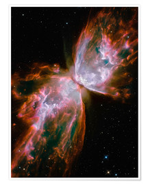 Póster Premium  The Butterfly Nebula