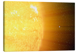 Quadro em tela  The relative sizes of the Sun and the Earth