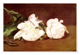 Póster Premium  Branch of White Peonies and Secateurs - Edouard Manet
