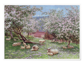 Póster Premium  Appleblossom - William Biscombe Gardner