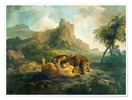 Póster Premium  Leopards at Play - George Stubbs