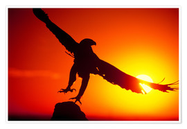 Póster Premium  A golden eagle flies at dawn - Dave Welling