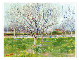 Póster Premium Blossoming orchard