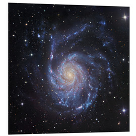 Quadro em PVC  M101, The Pinwheel Galaxy in Ursa Major - Robert Gendler